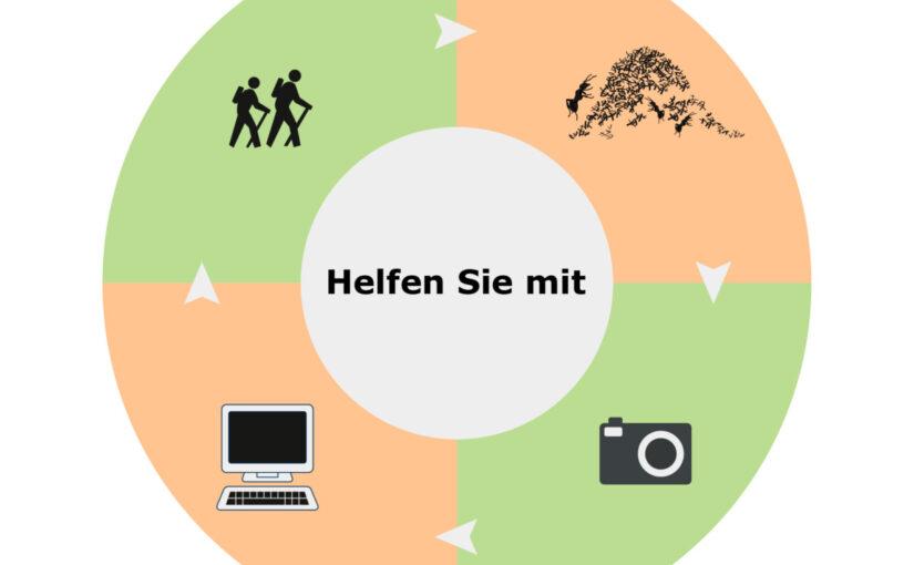 Infografik. Helfen Sie mit beim Waldameiseninventar Bern. CC BY SA 4.0 Isabelle Trees Frauenkappelen Switzerland