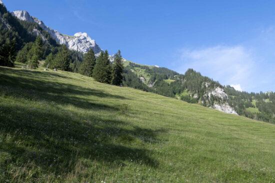 Landschaft-Spiggegrund-im-Kiental-CC-BY-SA-4.0-Martin-Albrecht-Schüpfen-Switzerland-scaled-825