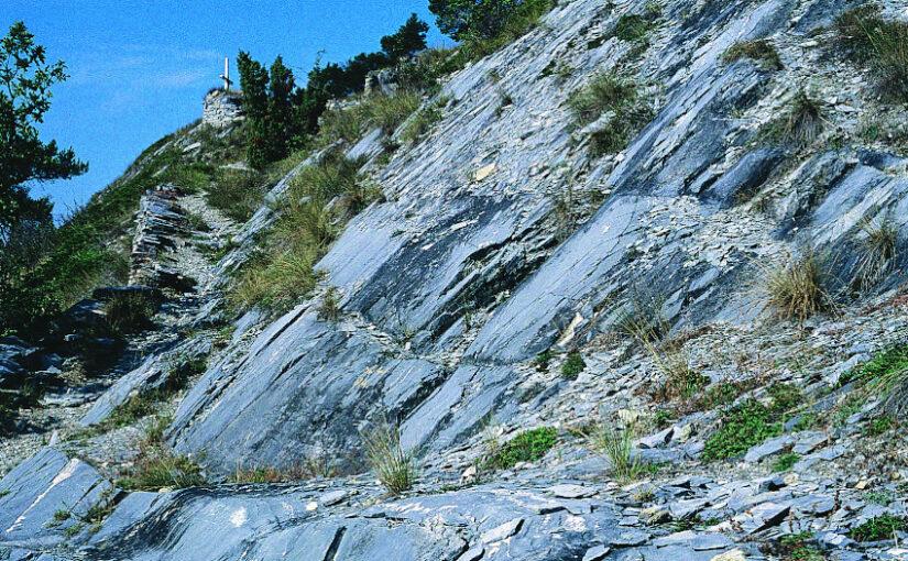 Felsensteppe im Wallis: Sommerexkursion an die Südrampe